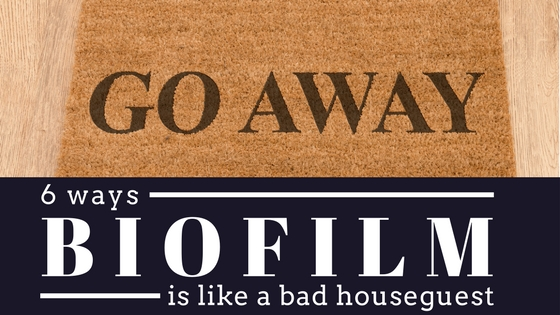 6 ways biofilm is like a bad houseguest