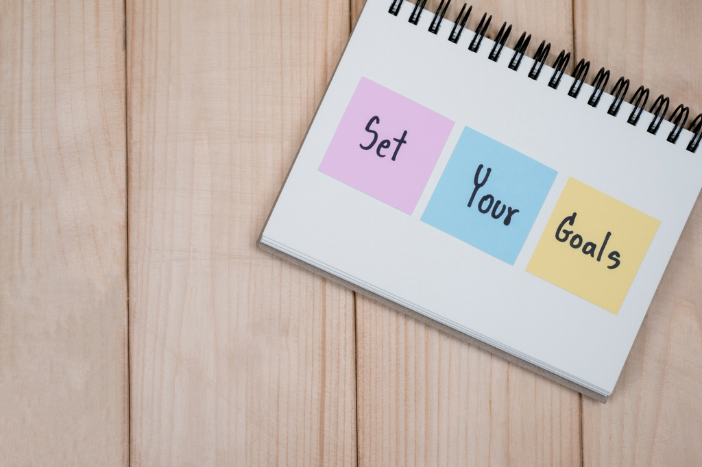 set business goals for next year