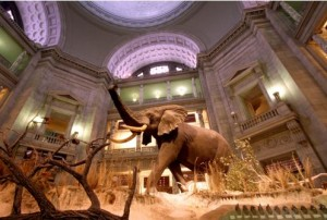 Welcome Reception: A Night at the Museums