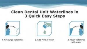 3 easy steps to using mintakleen