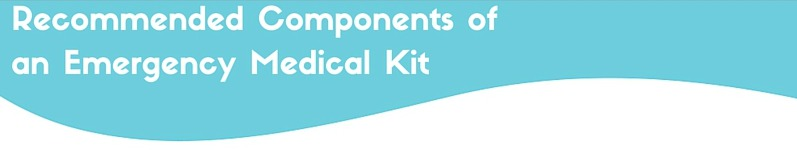 emergency medical kit components