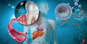 oral systemic health connection