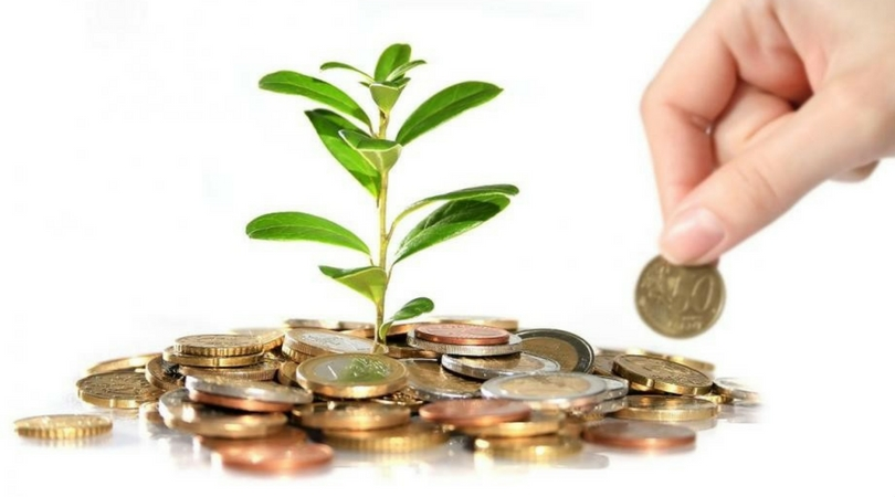 growing a money tree by investing