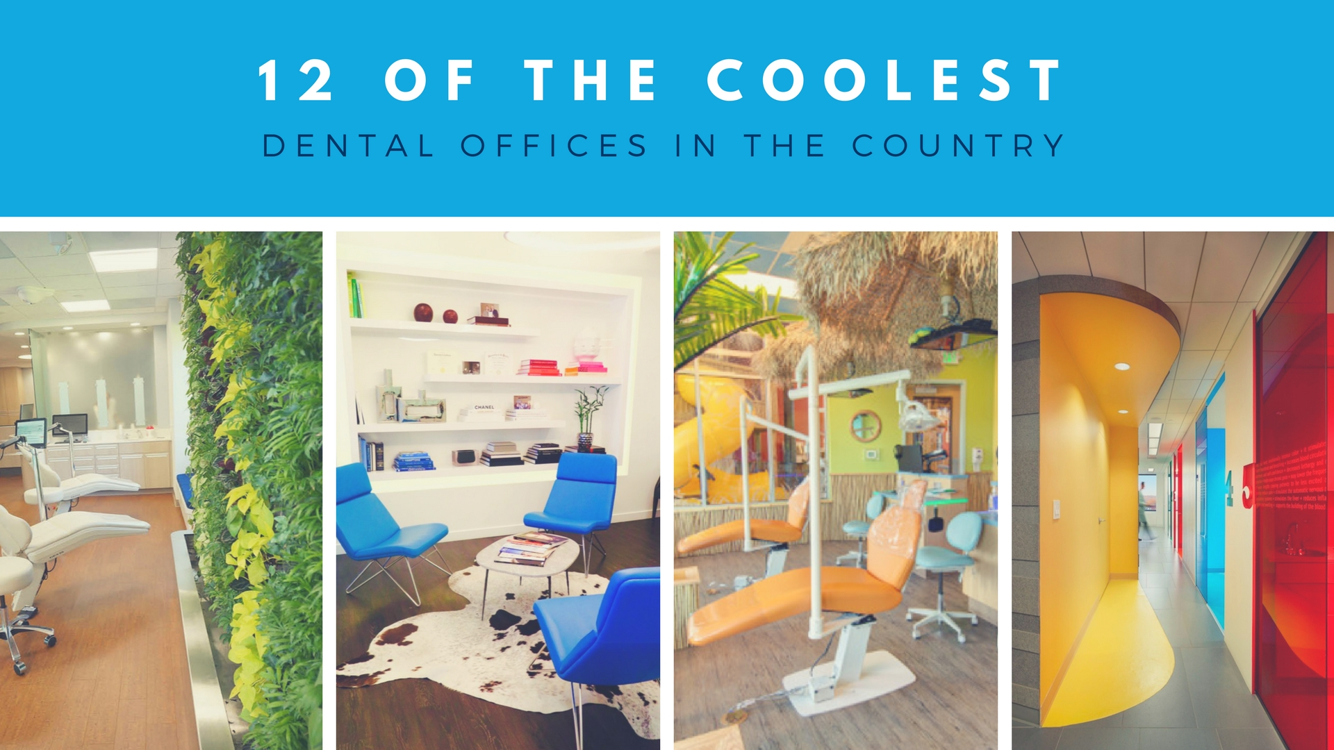 12 Of The Coolest Dental Offices In The Country Off The Cusp