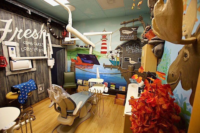 north woods country themed childrens dental operatory