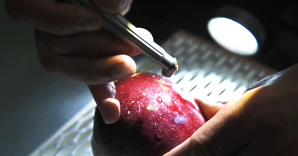 Solea all-tissue-laser demonstration with an apple.